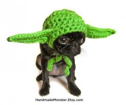 yoda inspired STAR WARS hat costume - I think fudge would not be happy with me but he'd look so adorable in this!: Hats, Animals, Dogs, Pet, Star Wars, Starwars