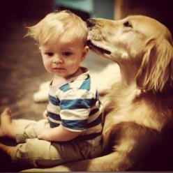 27 Dogs That Will Do Anything For Kids  And this is why dogs are the best kind of friends.: Animals, Dogs, Sweet, Best Friends, Pet, Puppy, Kids, Golden Retriever
