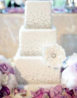 30 Most Luxurious Wedding Cakes You Will Love. To see more: http://www.modwedding.com/2014/01/19/30-most-luxurious-wedding-cakes-you-will-love/ #wedding #weddings #cakes: Silver Wedding Cake, White Wedding Cake, Wedding Ideas, Silver Cake, Wedding Cakes,
