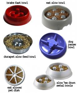 """slow down"" bowls (to keep your dogs from eating too fast and potentially making themselves sick): Doggie, Dog S Eating, Slow Down, Dogs, Dog Bowls, Food Bowls, Furbabies, Amazon, Animal"