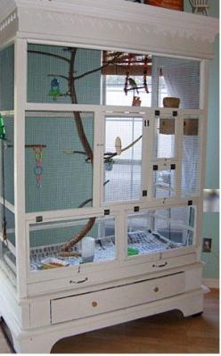Armoire Aviary! Armoire Aviary! I had a friend who tried to do something like this.  It would have worked, but she kept cleaning it all the time!: Ideas, Birdcage, Pet, Cabinets, Diy Aviary, Birds, Animal