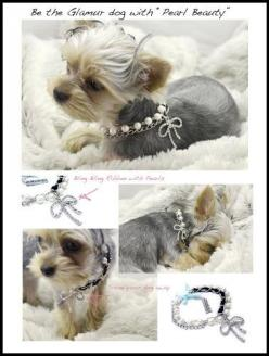 Dibalulu Pet Couture Dog Accessories – Pearl Beauty Dog Necklace – S « dogsiteworld.com: Dog Accessories Love, Dogs Accessories, Beauty Dogs, Dog Collars, Pet Accessories, Couture Dogs, Accessories For The Dogs