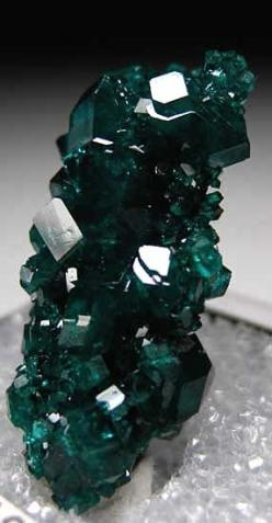 Dioptase, Tsumeb, Namibia, #mineral: Forgiveness Helps, Gems Minerals, Healing Emotional, Stimulates Forgiveness, Minerals Dioptase, Increases Spirituality, Crystals Rocks, Spirituality Inner, Crystals Gemstones Minerals
