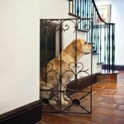Dog house under stairs. So much better than a dog crate!: Idea, Dogs, Dream House, Pet, Dog Crates, Dog Houses, Under Stairs, Animal