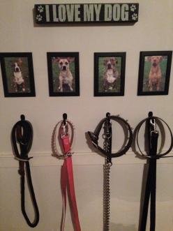Dog Walking Station #Pitbull #Dog #DIY Every one should have this it makes life a lot easier!: Doggie, Dog Walking, Idea, Dogs, Furbabies, Animal
