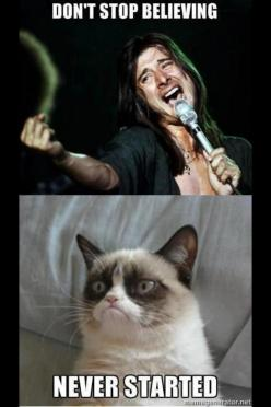 Don't Stop BELIEVEING!!!!!    aw poo not this again. Kinda hard to keep a straight face. The cat seriously looks like he's about to crack up.: Cats, Grumpycat, Funny Stuff, Humor, Funnies, Grumpy Cat, Animal