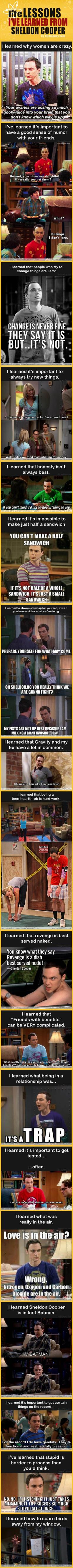 Dump A Day Life Lessons I Learned From Sheldon Cooper - 24 Pics: Sheldon Cooper, Life Lessons, Big Bang Theory Humor Quotes, Funny Sheldon Quotes, Big Bang Theory Funny Quotes, Big Bang Theory Funny Sheldon, Big Bang Theory Quotes Sheldon, Big Bang Theory