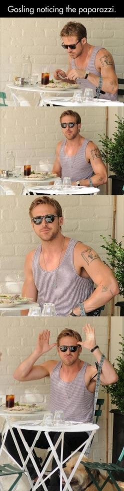 Funny Pictures Of The Day – 77 Pics: Ryan Gosling, Ryangosling, Giggle, Funny Pictures, Gosling Noticing, Marry Me