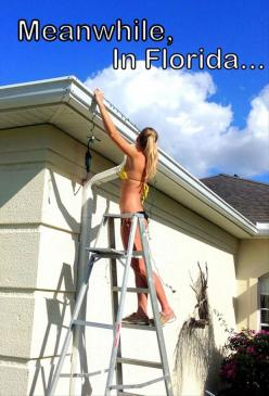 Funny Pictures Of The Day – 90 Pics: Funny Pictures, Florida Life, Christmas, Funny Stuff, Funnies, Humor, Meanwhile In