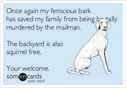 Hmm, well, I don't think those were the real issues here, bud, but, um, thanks for that...: Animals, Dogs, Pet, Funny, So True, Fur Babies, Ferocious Bark