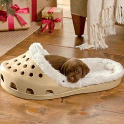 How Amazing Is This Croc Shoe Dog Bed? ❤ LUV IT! I hope it comes with the chocolate lab puppy! | via Brit + Co.: Shoes, Shoe Small, Animals, Small Pets, Dogs, Pet Beds, Dog Beds, Puppy