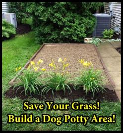 How to Build a Dog Potty Area -- A designated potty spot would make it easier to keep the lawn clean for the kiddo, and keep Kiley from getting as muddy when she has to pee on rainy days...: Garden For Dog, Dog Idea, Backyard Dog, Backyard For Dog, Diy Do