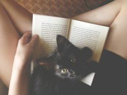 I have had everyone of these conversations!: Books, Reading, Animals, Post, Black Cats, Kittens, Kitty, Blackcat, Cat Lady
