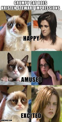 I nominate Grumpy Cat as actor of the year, and humbly suggest he be given any acting role people are dumb enough to give to her.: Cats, Stewart Impressions, Grumpycat, Kristen Stewart, Funny Stuff, Grumpy Cat, Kristenstewart, Funnie