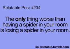 "I usually let the spider out of my room before I lose it and when I lose I'm just like ""you bite me spider and I will end you"" it never does.: Quotes, Relatable Posts, Truth, Funny Stuff, So True, Hate Spiders, Room"