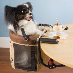 If they had this for big dogs yes please: Animals, Dogs, Pets, Funny, Pet High, High Chairs, Highchairs