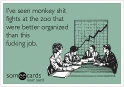 Ive seen monkey shit fights at the zoo that were better organized than this fucking job. | Workplace Ecard: Work Joke, Funny Ecards About Work, Giggle, Office Ecards, Truth, Office Humor Ecards, Funny Ecards About Life, Work Ecards Funny