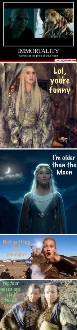/ Lord of the Rings / The Hobbit / Elves / Tolkien / Humor / Galadriel / Thranduil / Legolas / Gil-galad / Elrond: Funny Lord Of The Rings, Lord Of The Rings Hobbit, Elves Lord Of The Rings, Lord Of The Rings Elves, Lord Of The Rings Elfs, Lord Of The Rin
