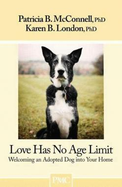Love Has No Age Limit - Welcoming An Adopted Dog Into Your Home: Babies, Dogs, Days, Doggies, Animals Just, Homes, Products