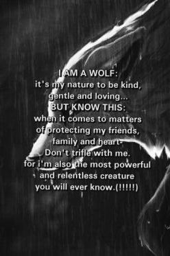 Many wolf hunters think wolves are these wretched, dangerous beasts. They're not. Wolves are usually weary of people and actually fear mankind. When they attack it is to protect themselves or their family. Human mothers don't get killed for wantin