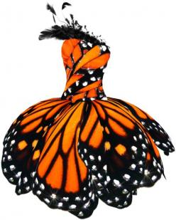 Monarch Butterfly Dress: Monarch Butterfly, Fashion, Idea, Style, Butterflies, Halloween Costumes, Dresses, Butterfly Dress