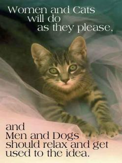 My Sentiments Exactly...: Cats, Animals, Quotes, Stuff, Funny, So True, Kitty, Women