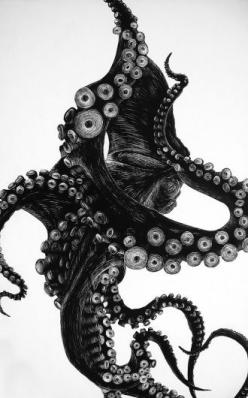 octopus pen & ink: Animals, Inspiration, Illustrations, Art, Tattoo, Octopuses, Drawing, Ink