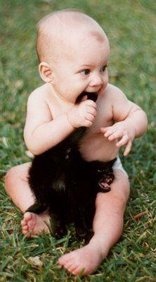 oh no....: Cats, Babies, Animals, Funny, Poor Kitty, Funnies, Kid