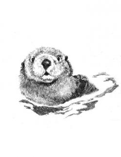 Otter Art - Little Swimmer - Otter Drawing. $20.00, via Etsy.: Design Illustrations, Otter Drawing, Sea Otters Tattoo, Otter Art, Otter Tattoos, Tattoos Piercing, Art Otters, Sea Otter Tattoo, Otter Illustration