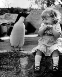 Penguin!: Penguin Love, Little Girls, Best Friends, Excited Face, Pure Joy, Penguin Stuff, Penguins 3, Make Me Smile, Animal