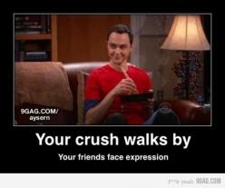 Pretty much... Bahahahahaha: Big Bang, Sotrue, Funny Stuff, So True, Humor, Friend
