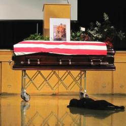 Protecting his late master one last time. Bless our troops and military dogs: Animals, Dogs, Hero, Best Friends, Navy Seals, Seal Jon, Hawkeye