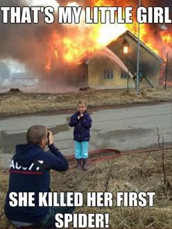 proud Dad: Little Girls, Spiders, Funny Pictures, Funny Stuff, Funny Quotes, Funnies, Humor