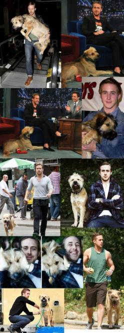 Ryan Gosling: Ryan Gosling, Dogs, Best Friends, Guy, Dog George, Boy, Man, Animal
