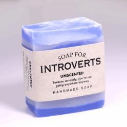 Soap for Introverts - BEST SELLER!: Gag Gift, Introverts Unite, River Soap, Introverts Soap, Whiskey River, Gifts Ideas, Funny Stuff, Introvert Gifts, Fun Gifts
