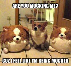 tastefullyoffensive:    [via]: Corgis, Animals, Dogs, Funny Stuff, Humor, Funnies, Funny Animal, Mocking