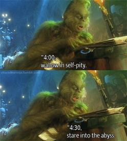 That awkward moment when you realize you might be the Grinch.: Daily Schedule, The Grinch, Christmas Movies, Thegrinch, Quote, Finals Week, My Life, Funny