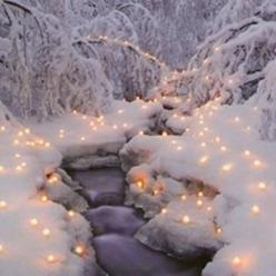 This is a beautiful #snow scene... I want to do this next time it snows!: Holiday, Winter Beauty, Beautiful, Snow, Winter Wonderland, Christmas Lights, Winter Scenes