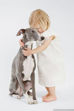 This is darling, but coming from a person that's lived with 4 different greyhounds at one point or another that dog is one of a kind    We have had 3 and two were just like this.: Dogs, Friends, Sweet, Girl, Baby, Kids, Italian Greyhounds, Animal