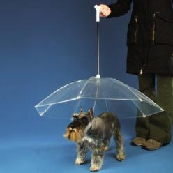 This is effing genius. I would do anything to avoid that pained look my dog gives me when we have to go out in the pouring rain.: Ideas, Animals, Umbrellas, Dogs, Stuff, Pets
