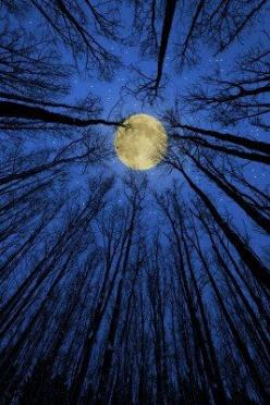 """Three Rivers Deep 