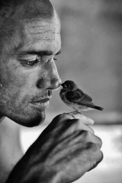 "toineaunaturel:  ""Kelly Slater"" by T. Sherms: But, Animals, B W, Posts, Black White, Kelly Slater, Birds, Photography"