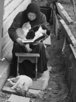 Vintage photo of a middle aged lady reading a book outside, with cats in her arms and at her feet.: Cats, Books, Animals, Catlady, Crazy Cat, Woman Reading, Photo, Black, Cat Lady