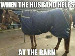 When the husband helps at the barn...: Animals, Horse Quotes, Equine, Horse Stuff, Horses, Husband Helps, Funny, Children, Funnies
