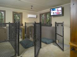 2nd wow...Dog House Interior 2 by homerebuilders. except i would put solid dividers between the dogs so they dont get overwhelmed by the other dogs: Kennel Idea, 2Nd Wow Dog, Wow Dog House, House Interiors, Dog Houses