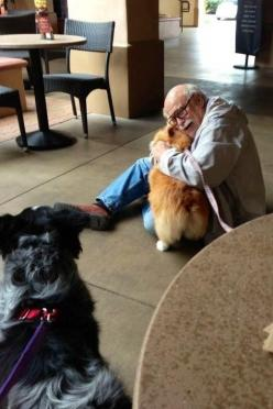 A corgi bringing joy to an elderly man she just met. | 51 Animal Pictures You Need To See Before YouDie: Corgis, Picture, Animals, Dogs, Corgi Bringing, Photo, Friend