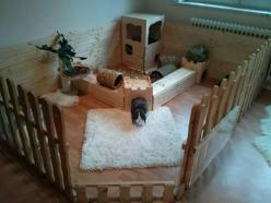 A home for bunnies in your house.: Rabbit, Ideas, Bunny, Pets, House, Bunnies, Animal, Good Good
