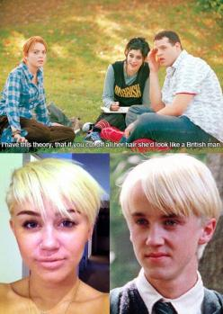 Ahahah! I love mean girls and Miley!: Miley Cyrus, Meangirls, Mean Girls, Funny, Harry Potter, Haircut, British Man