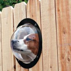 All dogs need one of these in their back yard fence. Drives them mad not being able to see who is passing. It will save you the trouble of chewed up fences.: Fence, Ideas, Animals, Dogs, Stuff, Pets, Windows