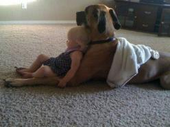 AWWWWW: Animals, Best Friends, Dogs, Sweet, Pets, Puppy, Kids, Baby, Things